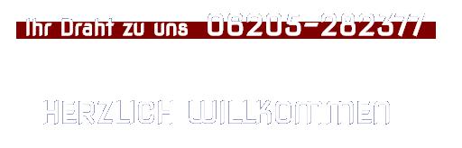 isz-zaunsysteme