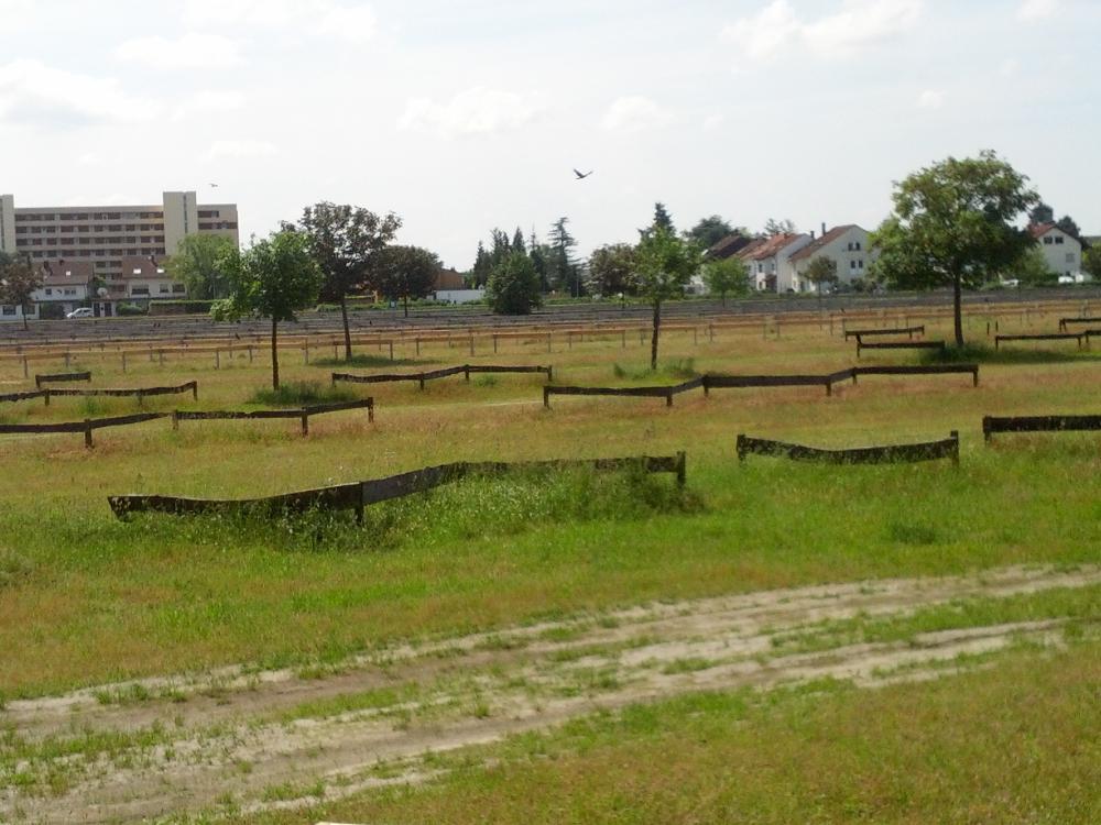 parkplatz-sanierung-hockenheim-08