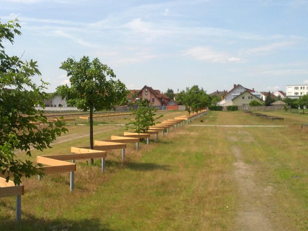 parkplatz-sanierung-hockenheim-10